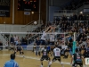 rennes-volley-110